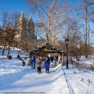 Central Park stroll in the snow