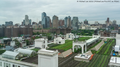 Brooklyn Grange Rooftop Farm on top of Building 3
