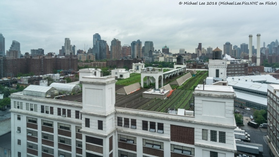 Brooklyn Grange Rooftop Farm atop Building 3
