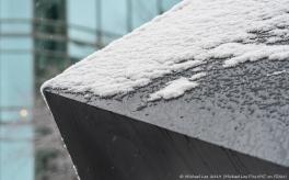 Snowy Alamo